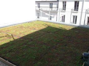 visite.terrasse 4e